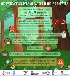 dia internacional del bosque infografia - Google Search Spanish Jokes, Forests, Trees, Google, Finding Nemo, International Day Of, Woods, Vacations, Woodland Forest