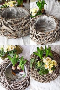 DIY spring decoration yourself make spring decoration for table. Deco idea with basket Ch . DIY spring decoration yourself make spring decoration for table. Deco idea with basket Christmas roses Hyacinths primrose moss and natural decoration . Garden Art, Garden Design, Garden Ideas, Diy Garden, Decoration Plante, Basket Decoration, Deco Nature, Christmas Baskets, Primroses