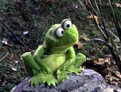 frog from Sesame St. - Google Search