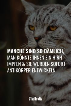 Die 7 besten Bilder von Freche zitate | Funny images, Fanny pics