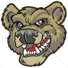 Mascot Clipart Image of a Bears Head Graphic