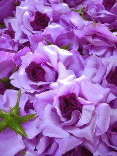 12 Purple Roses Artificial Silk Flower Heads by FayFlowerShop