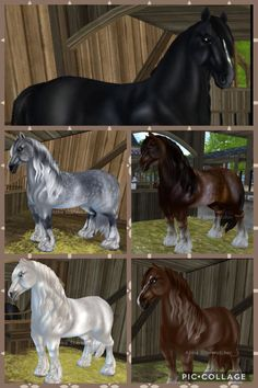 Pints of star stables of and mac Animals And Pets, Funny Animals, Star Stable Horses, Shire Horse, Hobby Horse, Horse Breeds, Horse Art, Stables, Friends In Love
