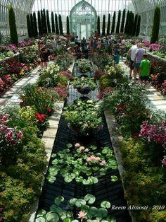 Sunken Garden Como Park