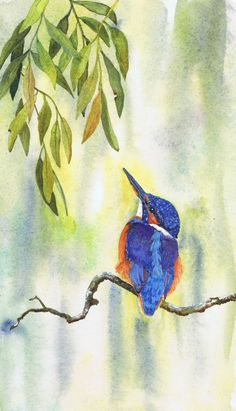 Kingfisher by Julie Horner