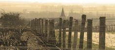 La Tour du Pouilly Fumé, Pouilly sur Loire, Nièvre, Bourgogne