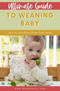 Such a helpful post if you starting the baby weaning process with your child. The best tips and tricks for introducing those first foods to your baby and how to navigate the stages of baby weaning #weaningbaby #babyfoods #babyweaning #babyledweaning #babyfoodtips Baby Led Weaning Breakfast, Baby Led Weaning First Foods, Baby First Foods, Baby Weaning, Baby Puree Recipes, Baby Food Recipes, Baby Food Makers, Baby Feeding Schedule, Solids For Baby