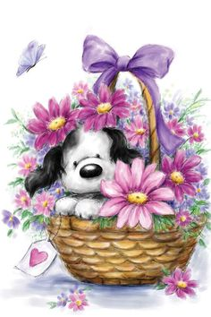 Wishing you a very Happy Birthday. Cute Images, Cute Pictures, Canvas Artwork, Canvas Prints, Grey Dog, Cute Clipart, Tatty Teddy, Happy Art, Birthday Images