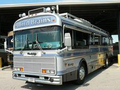 Creative name! Bus Camper, Rv Campers, Bluebird Buses, Cool Rvs, Creative Names, School Bus Conversion, Funny Names, Motor Homes, Bluebirds