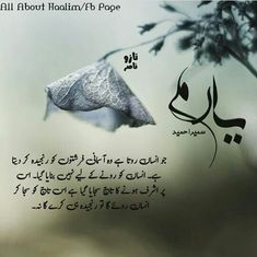 Soul Quotes, Hurt Quotes, Life Quotes, English Quotes, English Quotations, Urdu Love Words, Best Urdu Poetry Images, Quotes From Novels, Best Novels