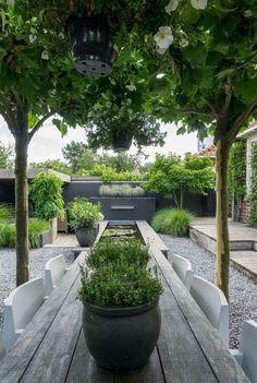 Stacey saved to cashAnnemieke toont haar tuin: modern, minimalistisch . Café Exterior, Design Exterior, Back Gardens, Small Gardens, Outdoor Gardens, Modern Gardens, Small Backyard Landscaping, Landscaping Tips, Backyard Ideas