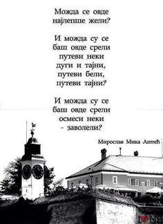 M. ANTIĆ
