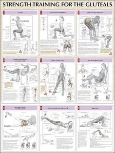 ~ Strength Training Poster ~