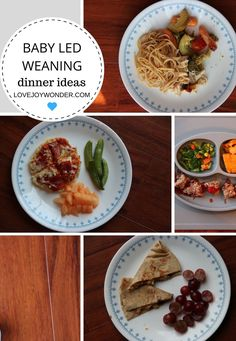 LoveJoyWonder.com - Baby Led Weaning and Toddler Montessori Dinner Meal Ideas and Inspiration