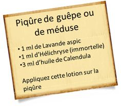 Lifestyle 341710690450908568 - piqûre avec calendula officinalis Source by brunoriotte Health Icon, Health And Wellness, Wellness Tips, Health Care, Healthy Lifestyle Tips, Healthy Tips, Healthy Hair, Naturopathy, Health Logo