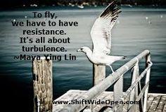 Maya Ying Lin fly