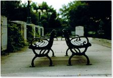 Kristy Miyanishi Image Photography, Outdoor Furniture, Outdoor Decor, Bench, Fine Art, Canning, Park, Artist, Home Decor