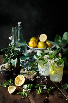The Little Hermitage - noperfectdayforbananafish: (via Limonada casera. Cocktail Photography, Dark Food Photography, Menue Design, Food Design, Speisenkarten Designs, Smoothies, Food Styling, Food Art, Food Inspiration