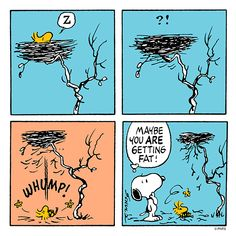 Woodstock is getting fat? / Snoopy and Woodstock / The Peanuts Gang