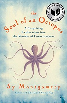 The marketing blueprint by jules marcoux dear mrs clause pinterest the soul of an octopus a surprising exploration into the wonder of consciousness english malvernweather Images