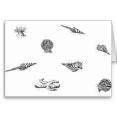 Black and white patterns of seashells | seashells seashell black and white black white nautical sea ocean ...