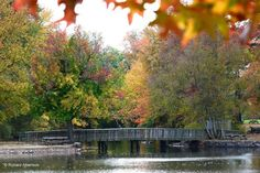 Travel | Delaware | Fall Foliage | Scenic Drives | State Parks | Beautiful Delaware | Adventure