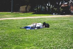Field of Dream Picnic Blanket, Outdoor Blanket, Field Of Dreams, Personal Portfolio, Picnic Quilt