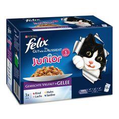 Animalerie  Felix Aussi bon que beau Junior 12 x 100 g pour chat  sélection mixte