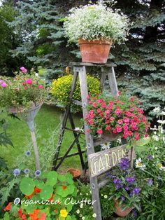 DIY:: 12 Little to No Cost Charming Gardens Ideas !