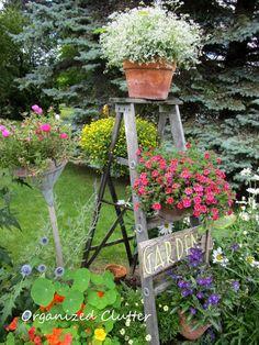 Ladder for the garden