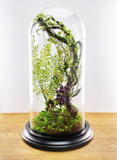 The mirage of an enchanted forest. This forest floral composition Dorcas is entirely designed and created by me, using high quality artificial plants. Protected by the glass dome, it requires no interviews.  Dimension (with the wooden base): 25 x 25 x 43 cm  Idle or under the Bell miniature furniture are optional, they are also for sale in my shop.  Neat and secure in polystyrene + double packing strong cardboard boxes. Your package will be insured in case of loss or damage.  Delivery…