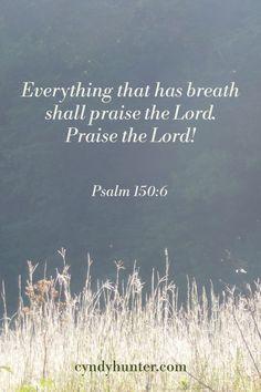 Faith Over Fear, Walk By Faith, Faith In God, Psalm 150, Psalms, Bible Quotes, Bible Verses, Hope In God, Praise The Lords