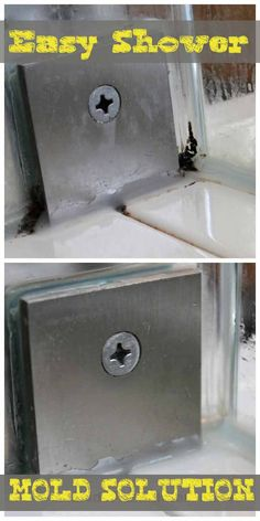 Get Rid of Shower Mold for Good