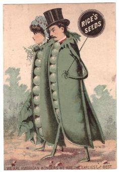 1880's Trade Card ANTHROPOMORPHIC Rice's Seeds We Are American Wonders Peas