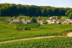Champagne-Ardenne, France via - @traveloclock
