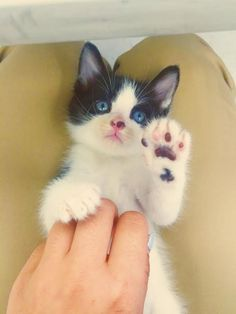 high five! pic.twitter.com/5OoYWiFrff