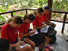 What have you learned at the MacRitchie Nature Reserve, Singapore?