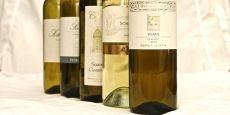 5 på topp-vintestar, rimelege #kvitvin #roedvin #rosevin #wine #red #white #rose