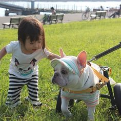Girl and her Bulldog