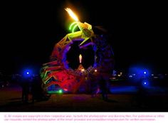 Snake at Burning Man festival, photo by Mark Petersen