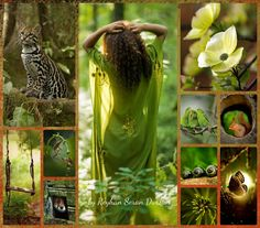 '' Amazing Nature ''  by Reyhan Seran Dursun