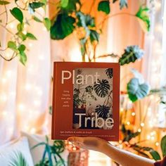 Plant Tribe Book (@planttribebook) • Instagram photos and videos Urban, Make It Yourself, Table Decorations, Photo And Video, Book, Videos, Plants, Fun, Photos