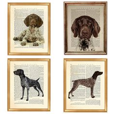 Set of 4 Prints German Shorthaired Pointer Dog, beautiful selection of Dog Bread Art Print on Upcycled Dictionary Book page 8 x 10 inches This is an upcycled print printed on old dictionary page. Paper comes from vintage Dictionary that have been rescued from throwing it away and have