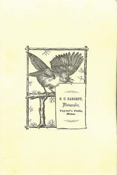 S.C. Sargent, Taylor's Falls, Minnesota Cabinet Card Back by depthandtime, via Flickr
