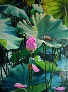 MY STYLE !!! Watercolor Projects, Watercolor Plants, Watercolor Art, Lilies Drawing, Lotus Flower Art, Lotus Painting, Drawing Wallpaper, Buddha Art, Illusion Art