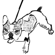 Jackie Mancuso draws charming portraits of dogs.   She also has a a book