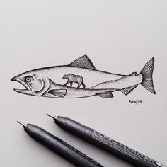 Drawing possibly inspired by the amount of salmon I've had the past week…