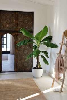 Interior design by BLOOMINT DESIGN - Hotel Cal Reiet Holistic Retreat - Guest House, Santanyí (Mallorca) www.bloomintdesign.com