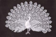 "Pergamano: ""Proud Peacock"" - by Ria Buizert Geven Crochet Doily Patterns, Crochet Doilies, Crochet Lace, Vellum Crafts, Paper Crafts, Objets Antiques, Parchment Cards, Bobbin Lace, Quilling"