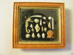 GREAT ARTIST MADE REAL TINY SEA SHELL SHADOW BOX FOR ANTIQUE DOLL DISPLAY JONES